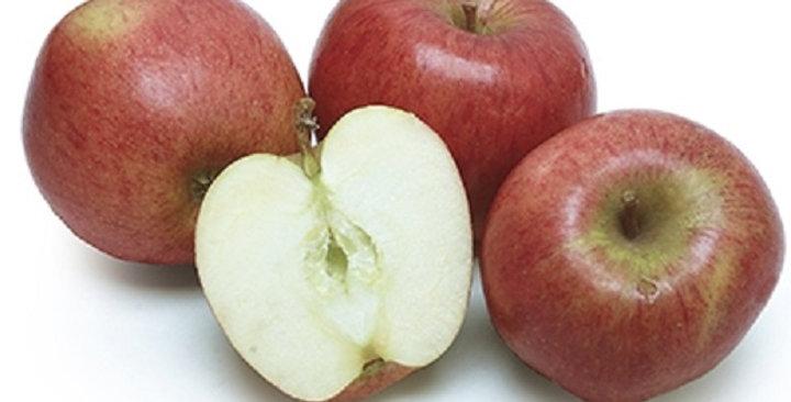 Organic Apples (Braeburn)