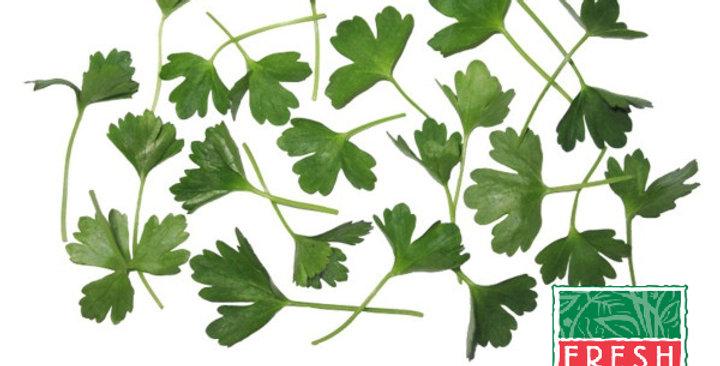 Microgreens (Parsley, Italian)