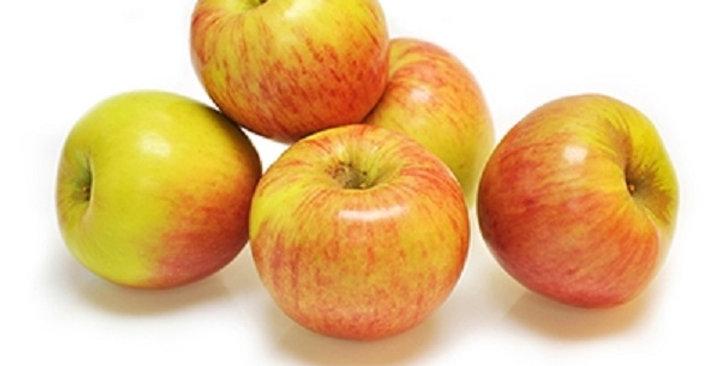 Organic Apples (Tsugaru)