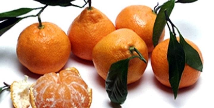 Tangerines (Satsuma)