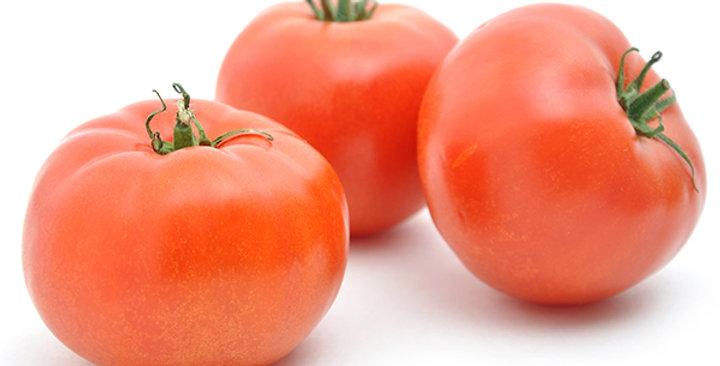 Tomatoes (Beef Steak)