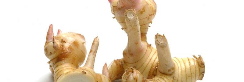 Galanga Root