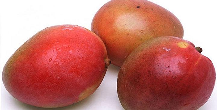 Organic Mangoes (Assorted Varieties)