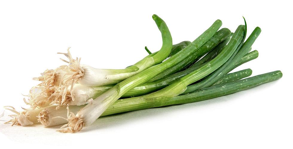 Organic Onions (Green)