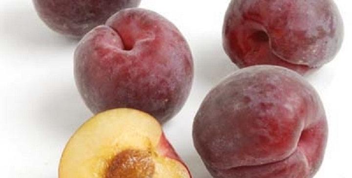 Apricots (Black Velvet™)