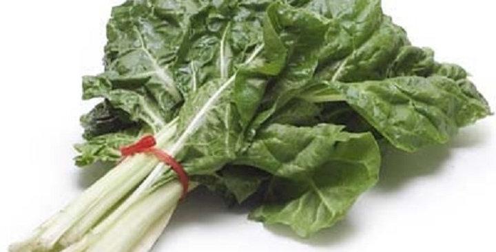 Organic Chard (Green)