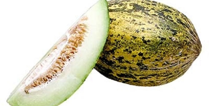 Melons (Santa Claus)
