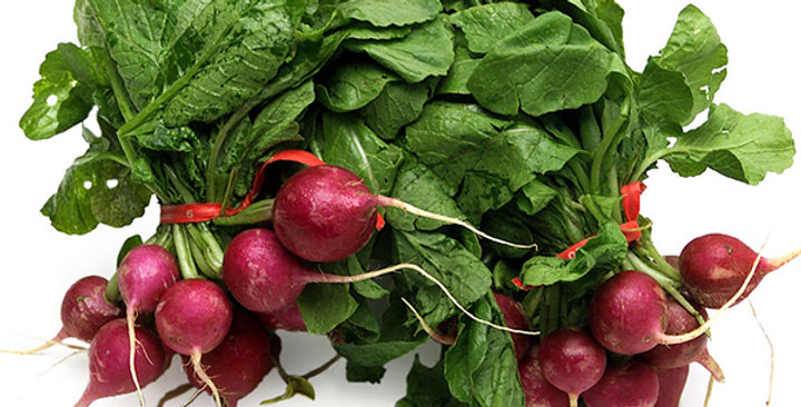 Radish (Purple Plum)