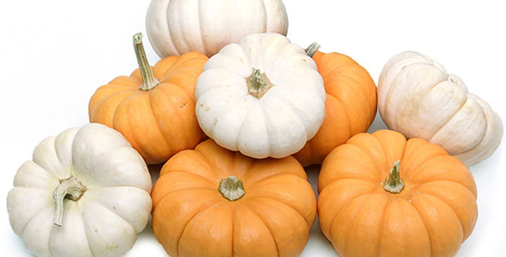 Ornamtneal Pumpkins (Mini, Orange & White)