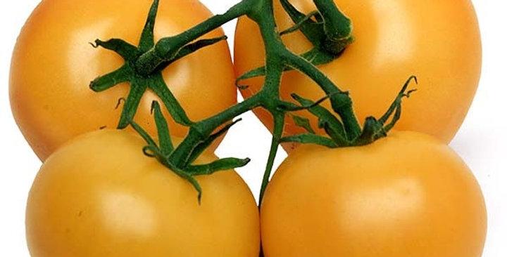 Organic Tomatoes (Cluster, Orange)