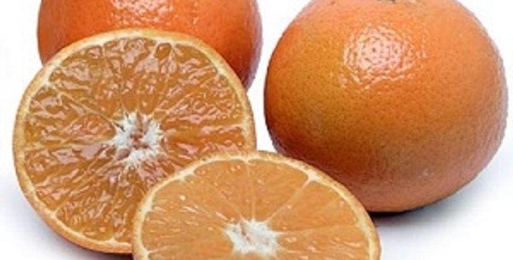 Tangerines (Neapolitan®/Page)
