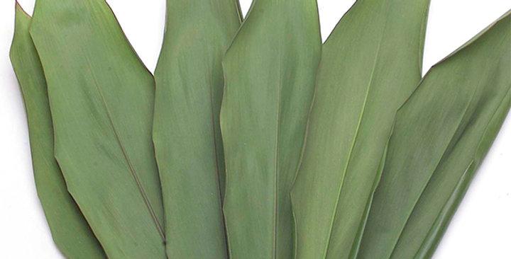 Ti Leaves (Green)