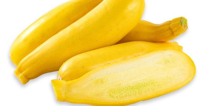 Squash (Gold Bar aka Yellow Zucchini)