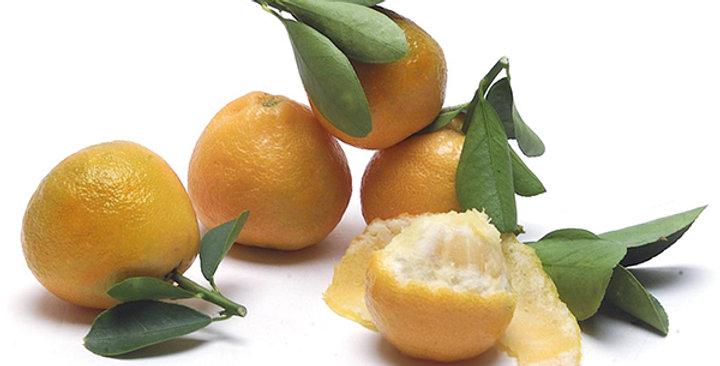 Kumquats (Fukushu)