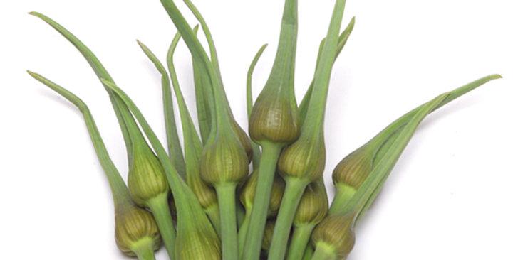 Garlic (Scapes)