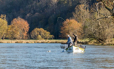 South Holston River Fly Fishing