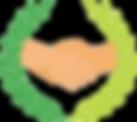 Logo Transparrent.png