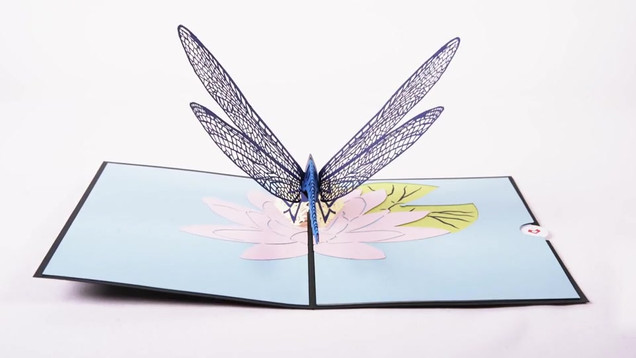 dragonfly-pop-up-card-video.mp4