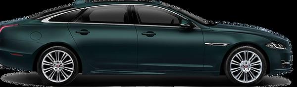 Jaguar-Tantra.png
