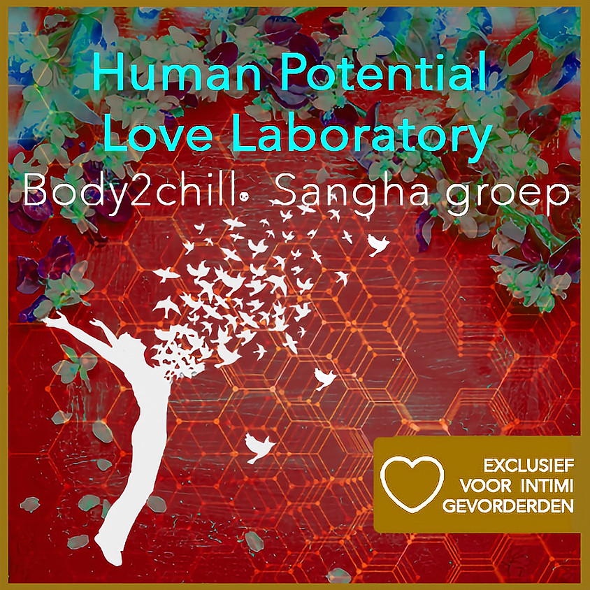 Sanga Body2chill® - Enter the magic at our Love Laboratory! | Exclusief voor intimi & gevorderden | Datum volgt