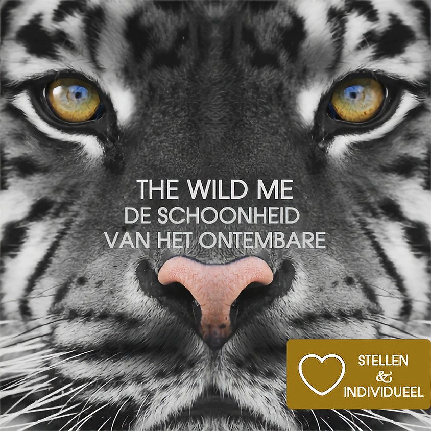 The Wild Me | Witte Tantra Weekend Retreat Incl. diner, ontbijt, lunch | Singles & Stellen | 11 & 12 dec 2021