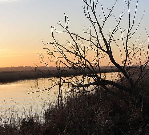 Stillness at sunset on the River Waveney