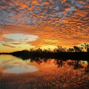 Queensland Heartland