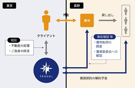 相続前の生前整理_図1.png