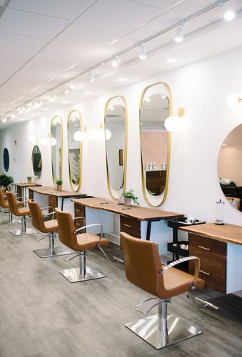 Salon Idea Book Luxerior