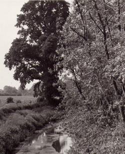 photo111