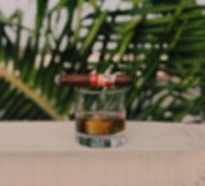 drink palm trees.jpg