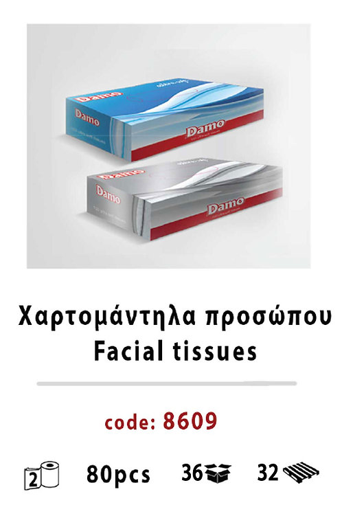 Facial Tissues 80