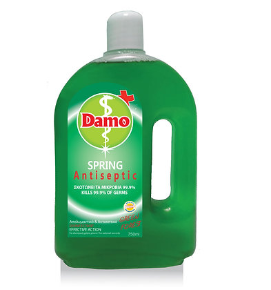 SPRING ANTISEPTIC GREEN FOREST 750ml