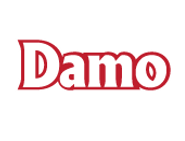 DAMO-LOGO.png