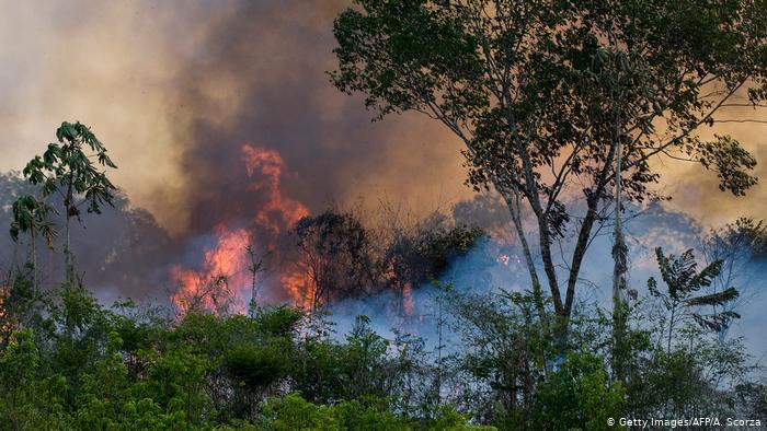 La Amazonía en llamas: son los humanos los que la están quemando