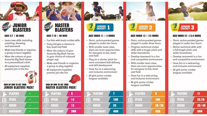 Junior Cricket Pathway.jpg
