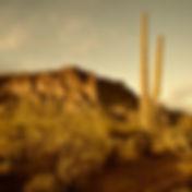 Desert landscape in the outback