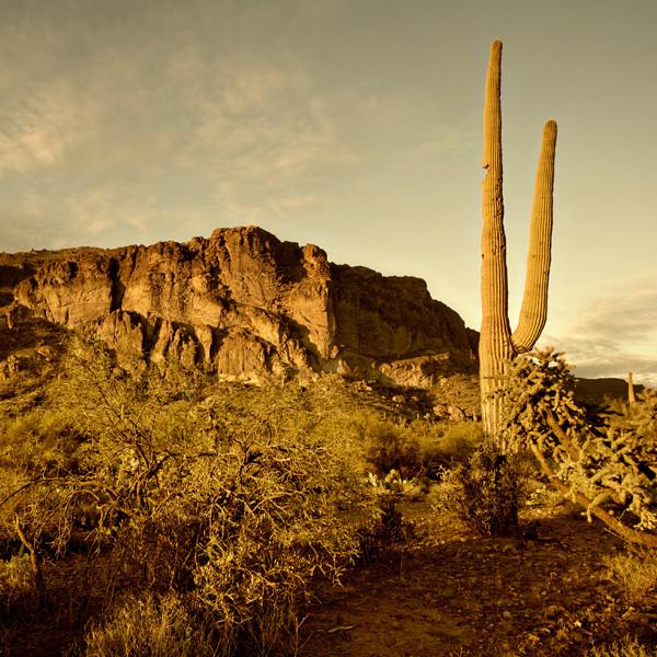 Scott Warren Worked to Prevent Migrant Deaths in the Arizona Desert