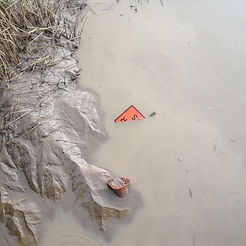 Kaihu River mud in Dargaville.JPG
