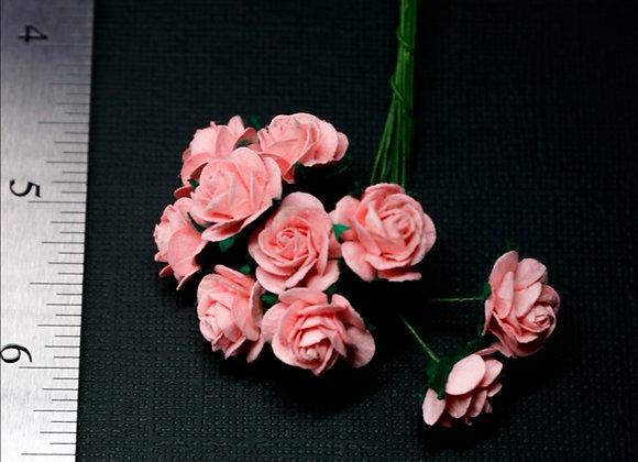 BLOOM - Mini Roses - Pink