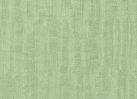 AMERICAN CRAFTS - Cardstock - Mint