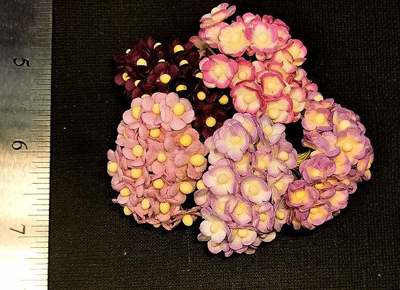 BLOOM - Mini Sweethearts - Purple