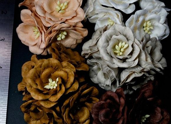 BLOOM - Magnolias - Earth Tones