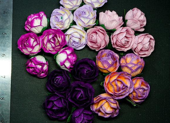 BLOOM - Peony Roses - Purple