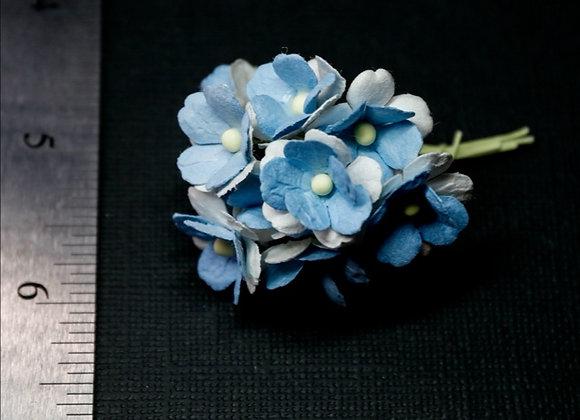 BLOOM - Sweethearts - Blue
