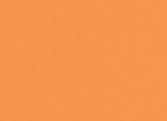 AMERICAN CRAFTS - Cardstock - Goldfish