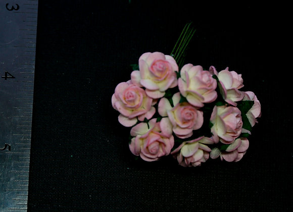 BLOOM - Mini Roses - Pink and White