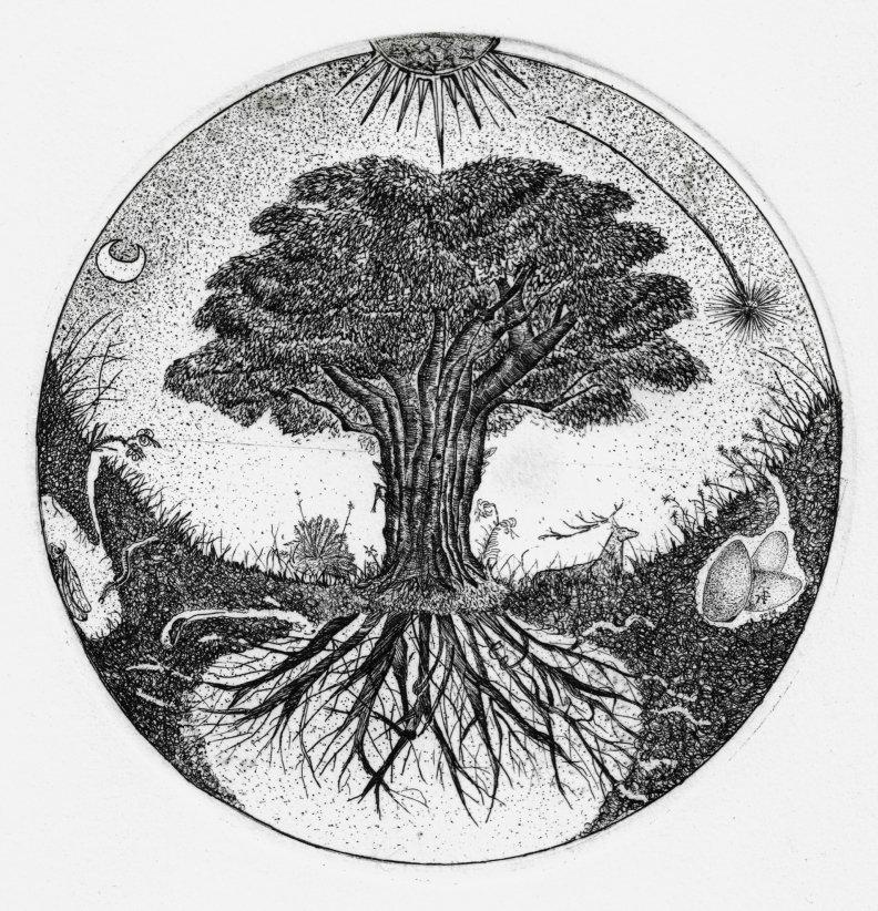 The tree of Life. Etching, δ :15 cm. pantazis tselios