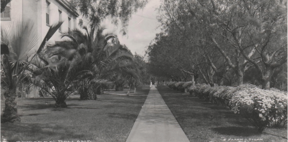 """The park-like """"daisy walk"""" that once graced the Officers' Row grounds."""