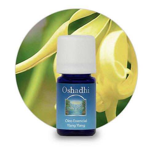 oleo essencial Ylang Ylang Extra 5 ml oshadhi